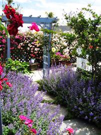 Miss Molly's Garden at our Chincoteague Inn