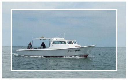 Summer fishing in chincoteague for Chincoteague fishing charters
