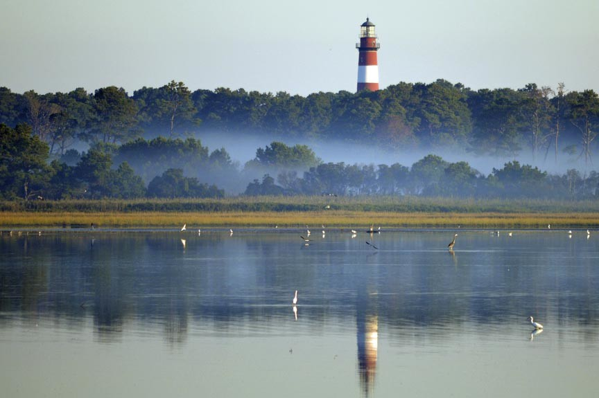 Discover Assateague Lighthouse