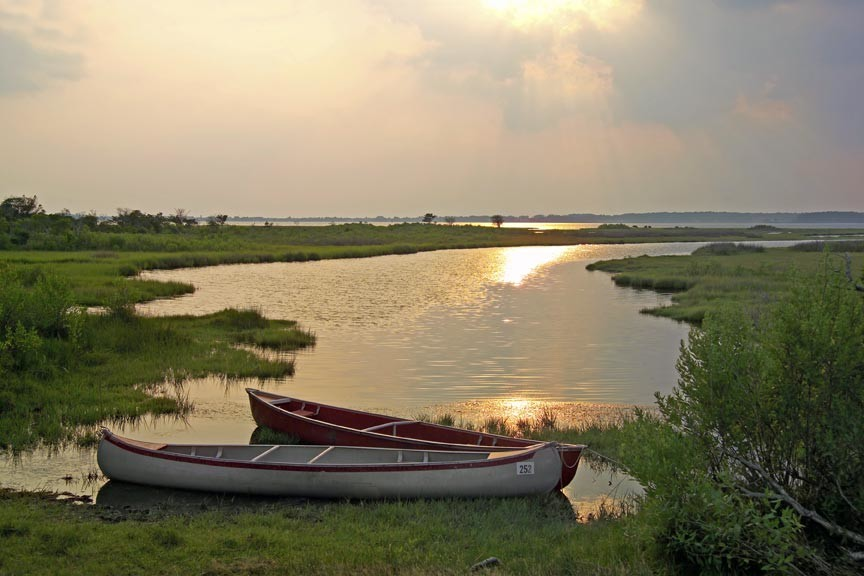 Spring Vacation On Chincoteague Island