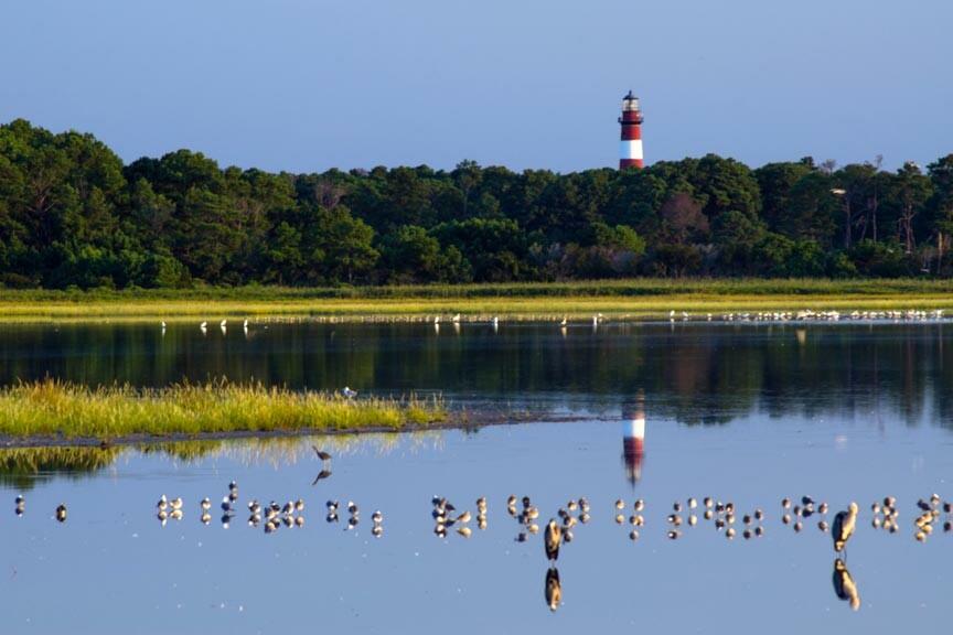 A Chincoteague Island Getaway to Assateague Lighthouse