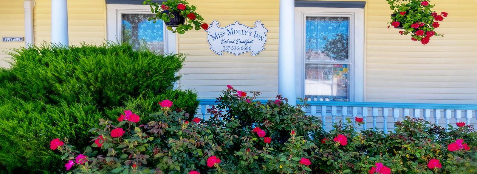 Miss Molly's Inn